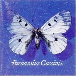 Parnassius Guccini [DOCUMENTO SONORO]