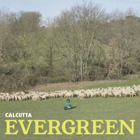 Evergreen [DOCUMENTO SONORO]