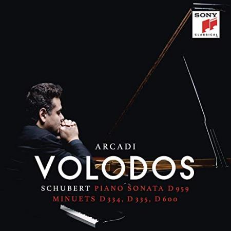 Piano Sonata D959 [DOCUMENTO SONORO]