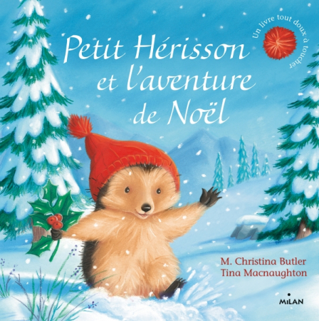 Petit hérisson et l'aventure de Noël